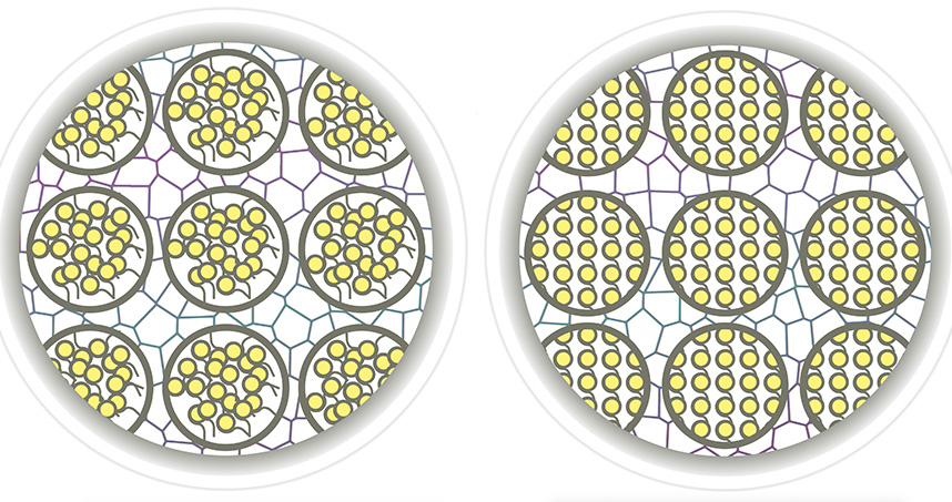 Disorderly chromatin (left) in a cell's nucleus compared to orderly chromatin (right)